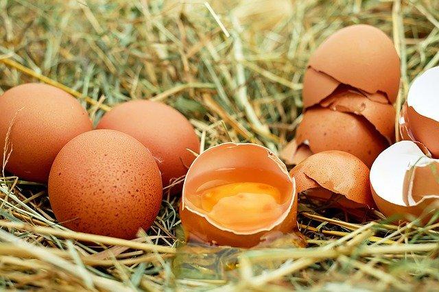 jaune d'œuf pour shampooings